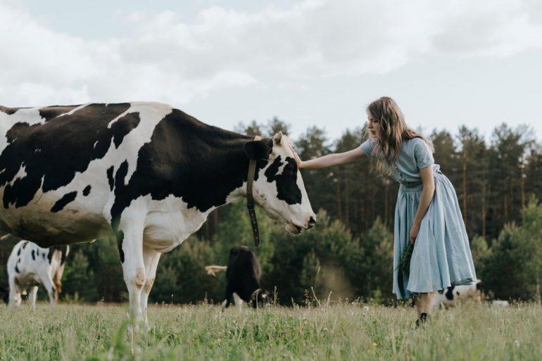 animal abuse in farming